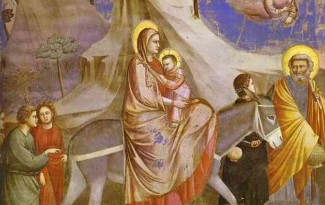opusalegria_giotto